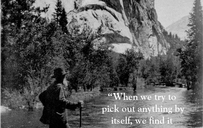 John Muir on Connections
